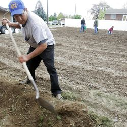 Tino Olivera digs as members of the Orem Community Church, the Orem 4th Ward of the LDS Church and the Assemblies of God work together.