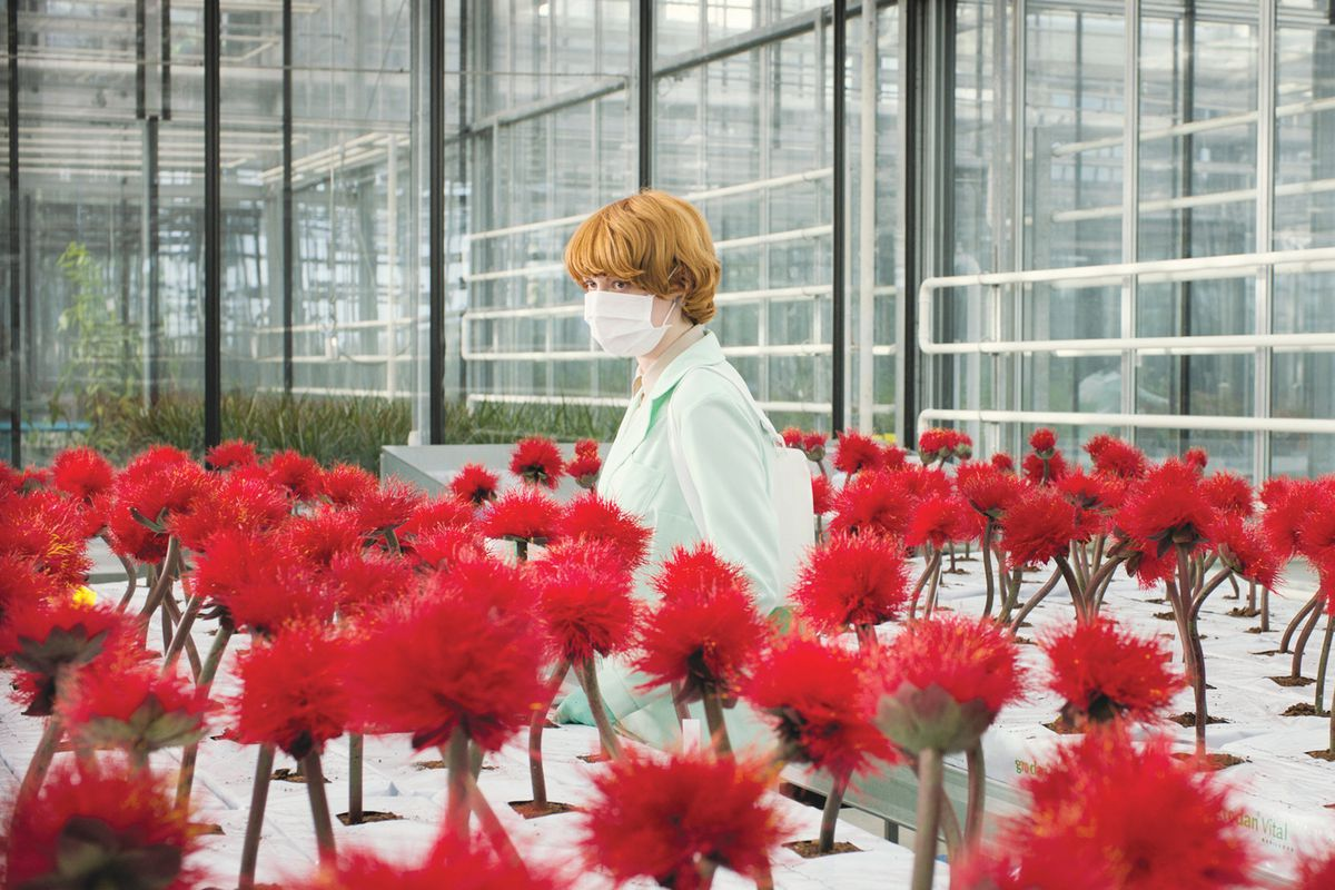A red-haired woman standing in a lab among red potted plants.
