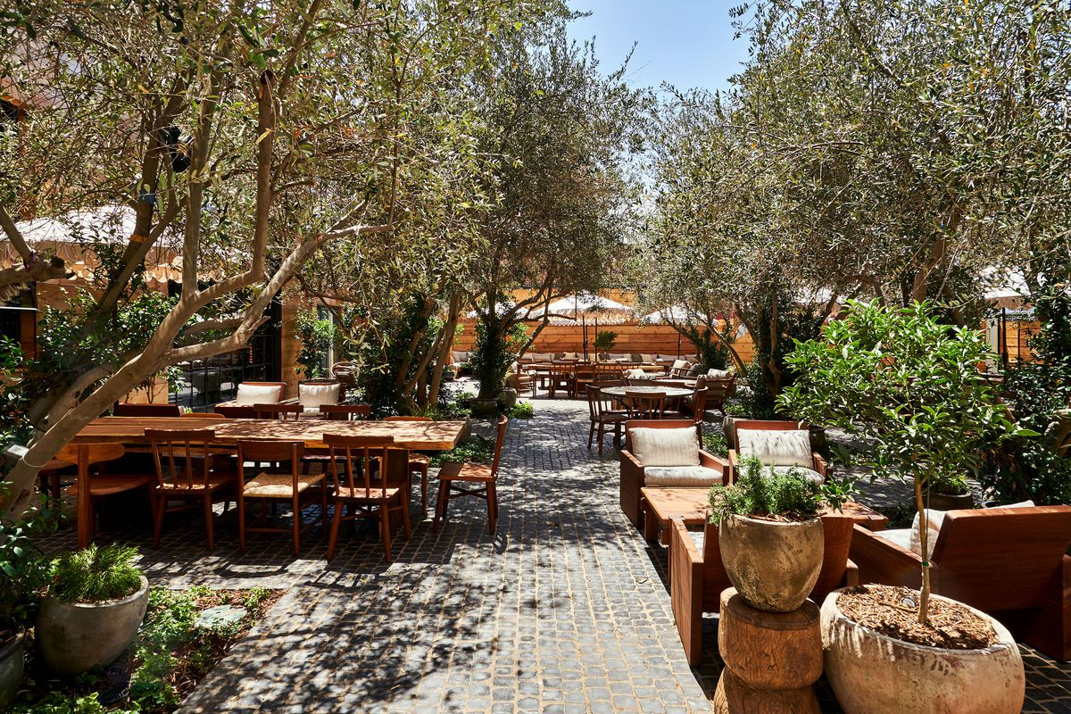 A lush garden area with brick pavers and outdoor seating. Olive trees shade the seating.