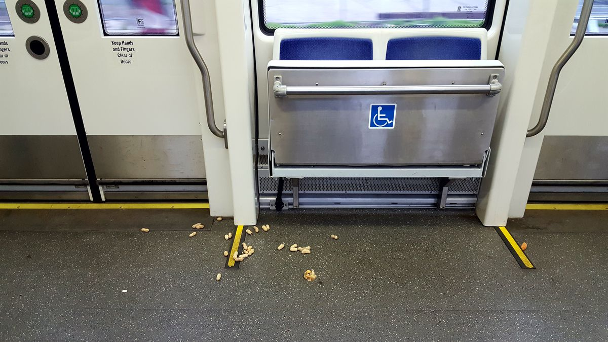 Peanuts on the floor of the streetcar.