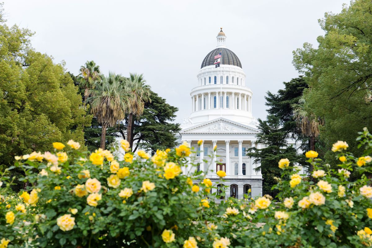 Flowers blooming in front of the Capitol Building in Sacramento.