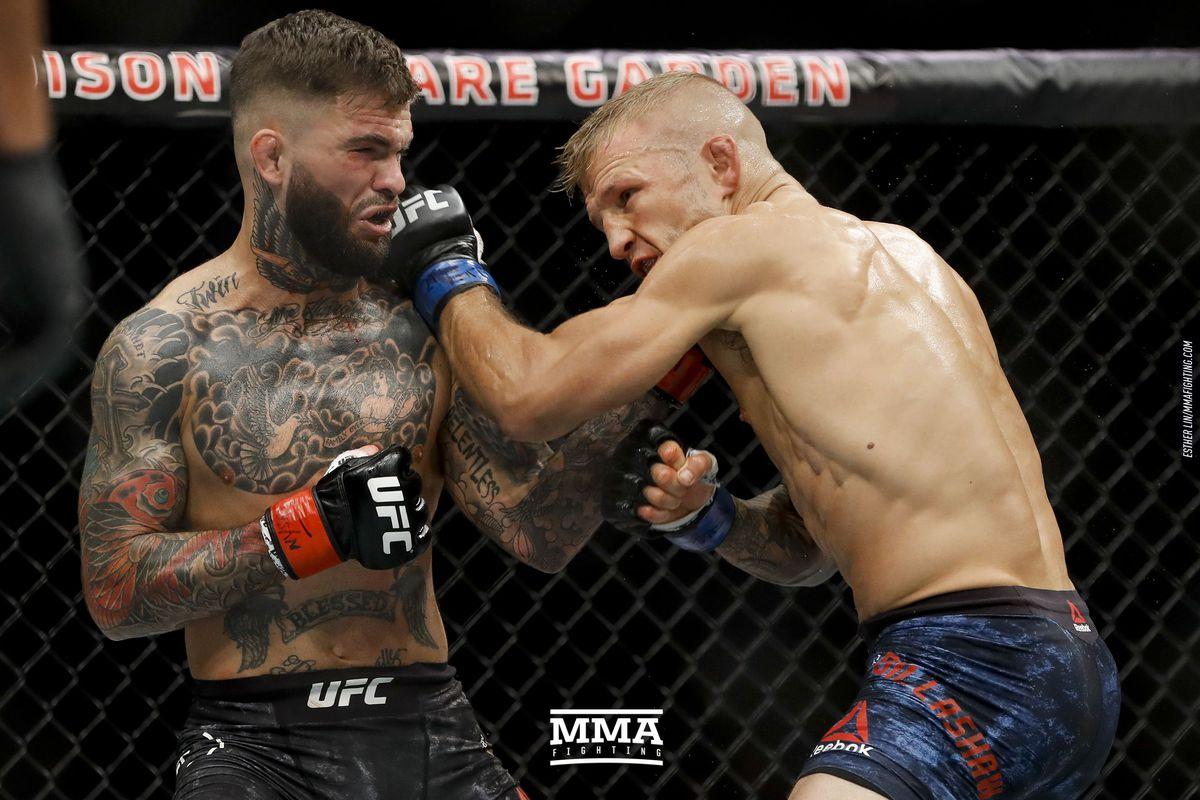 tj dillashaw vs cody garbrandt 2 full fight