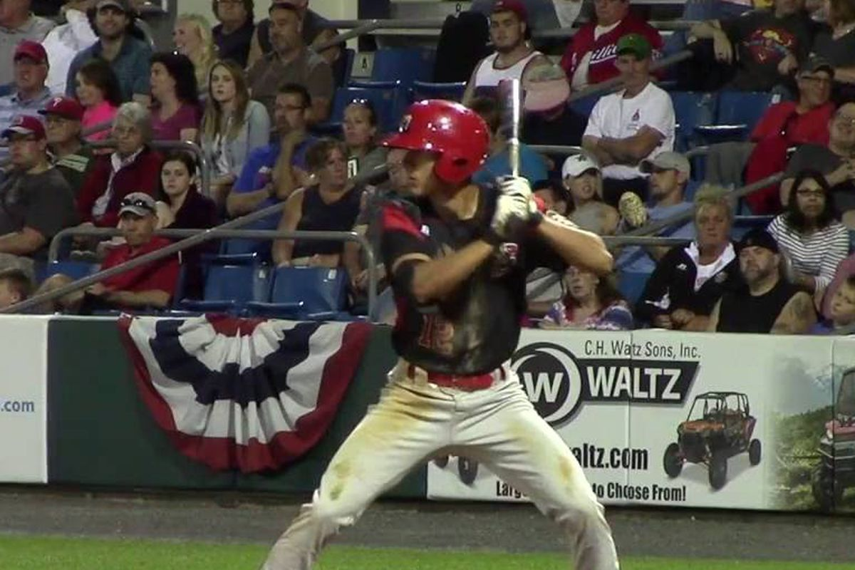 Fish Farm Report: May 13th - Fish Stripes
