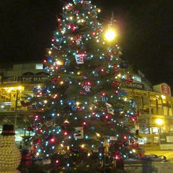 6:07 p.m. Another view of the tree with Wrigley in the background -