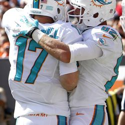 Sep 8, 2013; Cleveland, OH, USA; Miami Dolphins quarterback Ryan Tannehill (17) celebrates with Dolphins wide receiver Brian Hartline (82) after they connected for a touchdown against the Cleveland Browns during the third quarter at FirstEnergy Field.