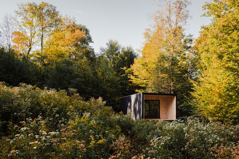 Timber cabin nestled in woods.