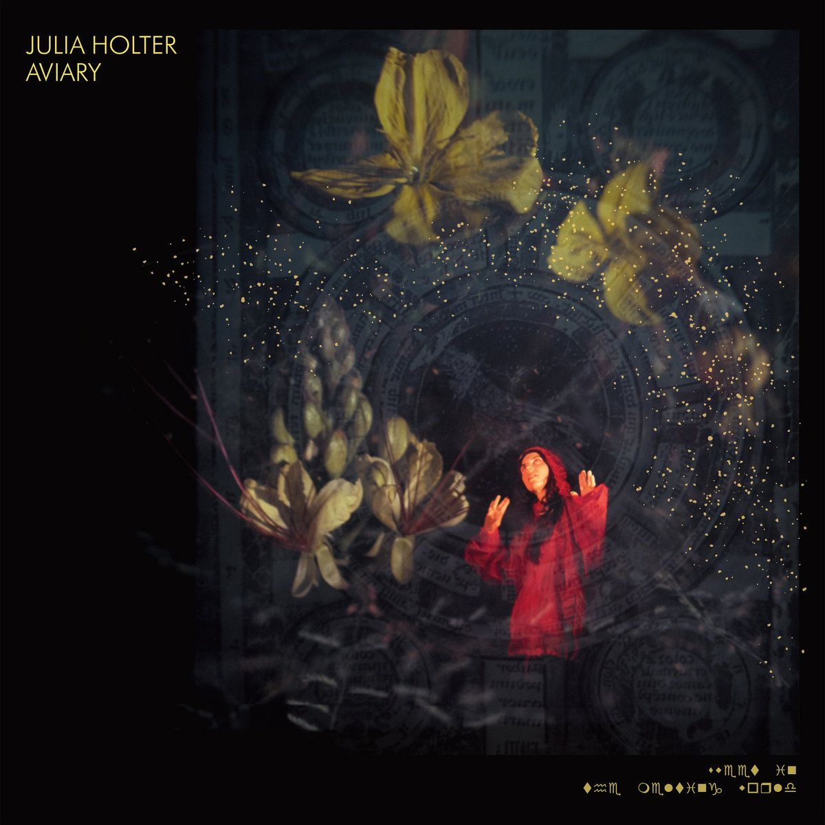Album cover of Julia Holter's 'Aviary'