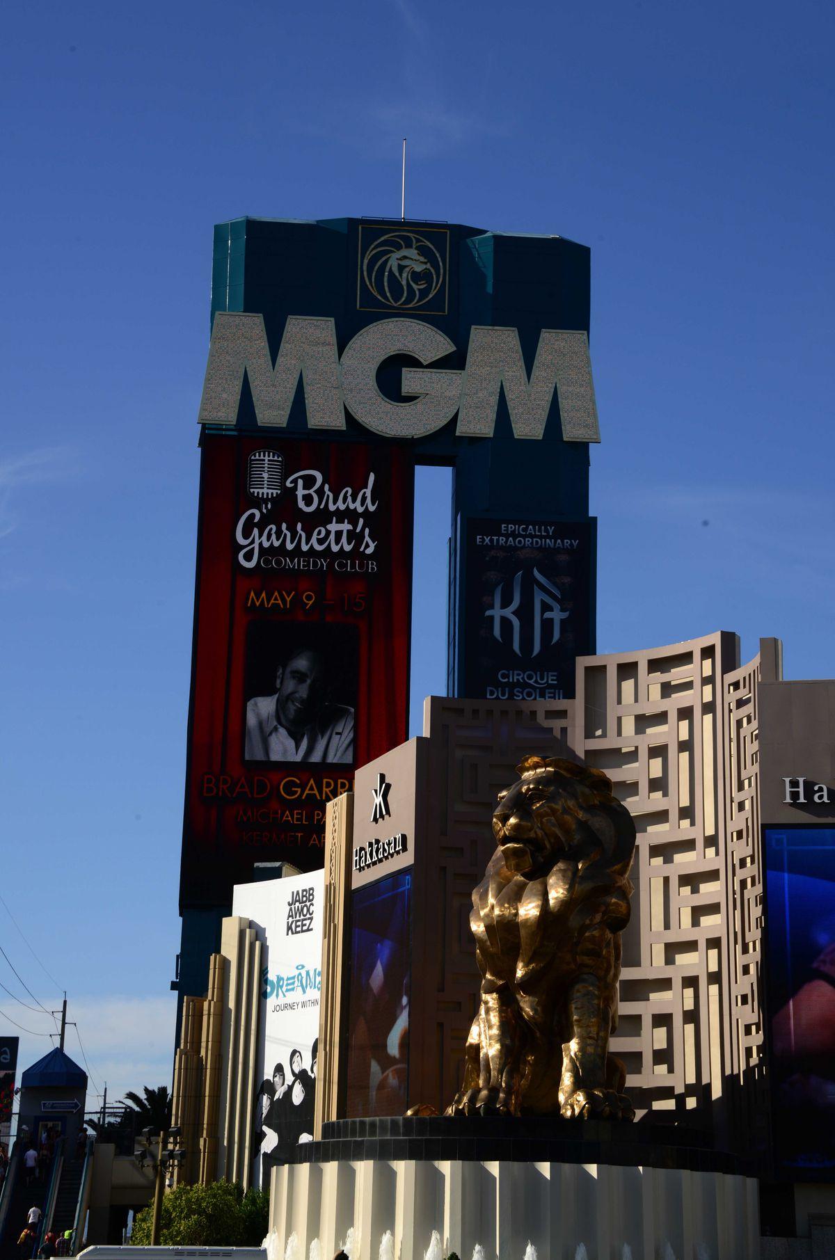 NFL: Las Vegas Views