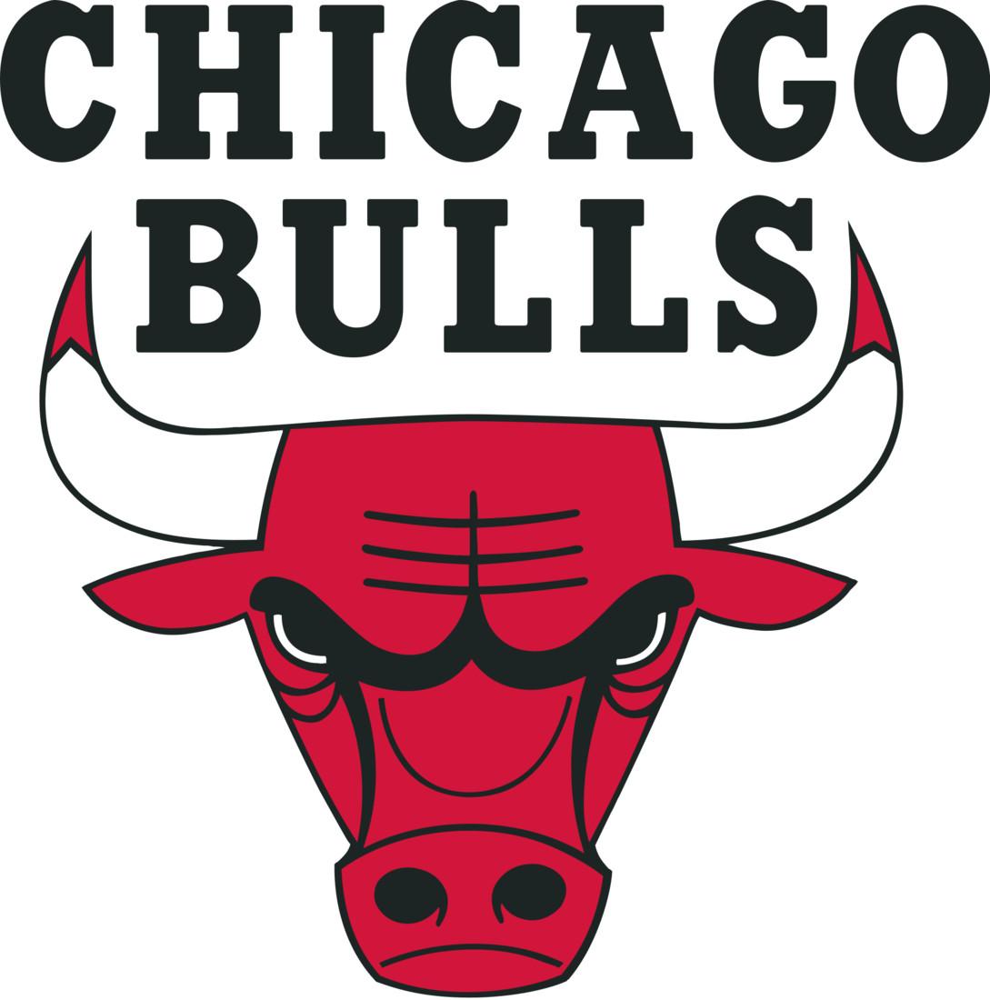 Chicago Bulls logo HHH