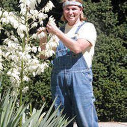 Becky Hansen, caretaker of Hardle Arboretum, with a yucca plant.