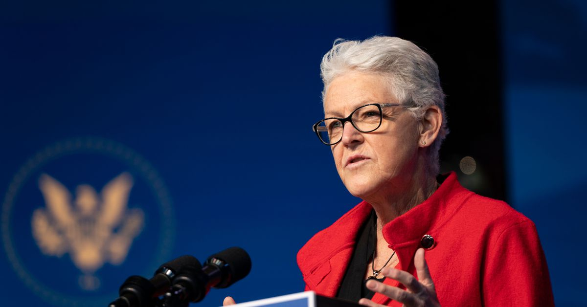 Meet Gina McCarthy, Biden's pick to lead the White House agenda on climate - Vox.com
