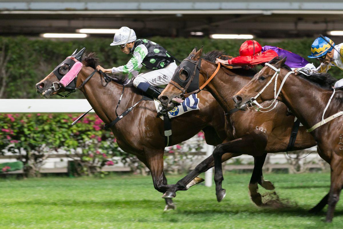 Horse Racing in Hong Kong - Happy Valley Racecourse