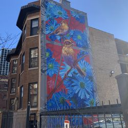 Nelson's sparrows are featured on this mural completed in 2019 on Montrose Avenue.