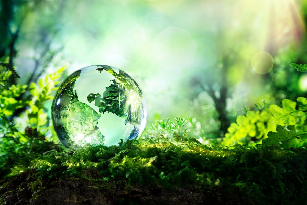 a global shift to sustainability would save us 26 trillion vox