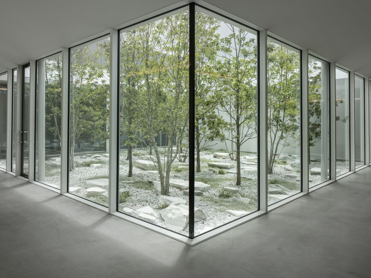The interior of the Menil Drawing Institute. There are floor to ceiling windows overlooking a courtyard with trees.