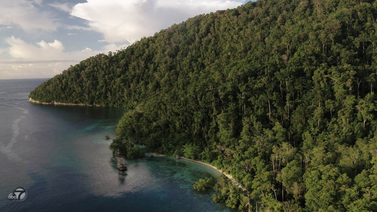 Closeup still of the edge of an island, covered in trees