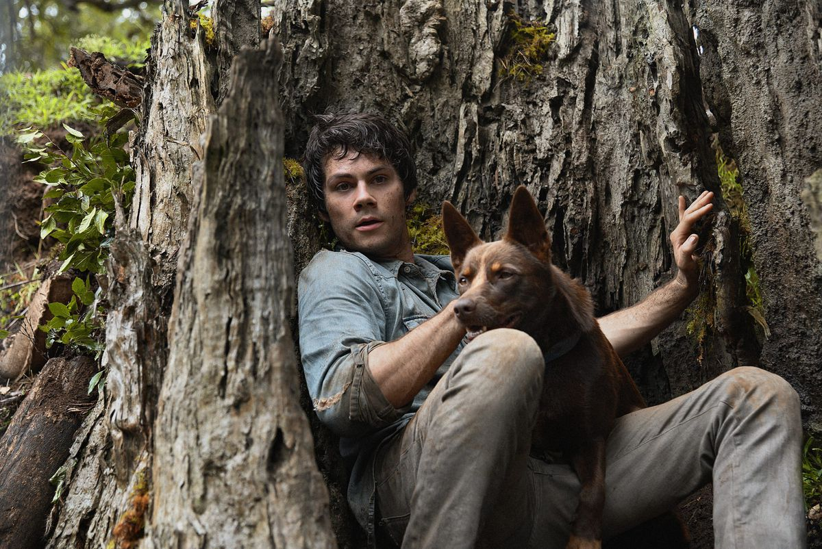 dylan o'brien and a dog in love and monsters