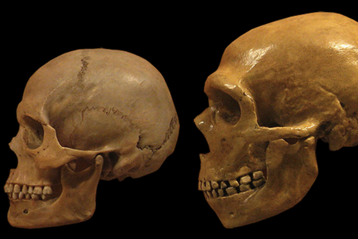Ancient Human Dna Found In Ice Age Caves Even When Bones Were