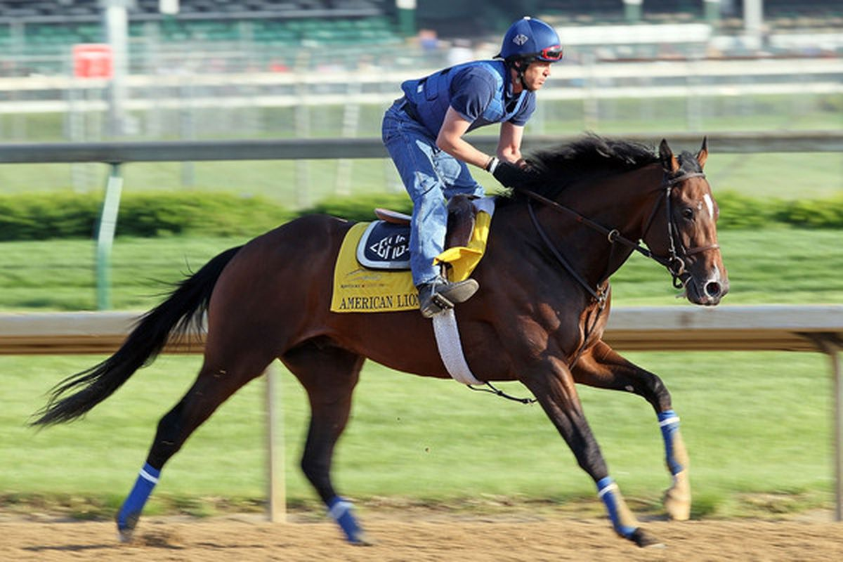 LOUISVILLE, KY - APRIL 29:  American Lion runs on the track during the morning workouts for the Kentucky Derby at Churchill Downs on April 29, 2010 in Louisville, Kentucky.  (Photo by Andy Lyons/Getty Images)