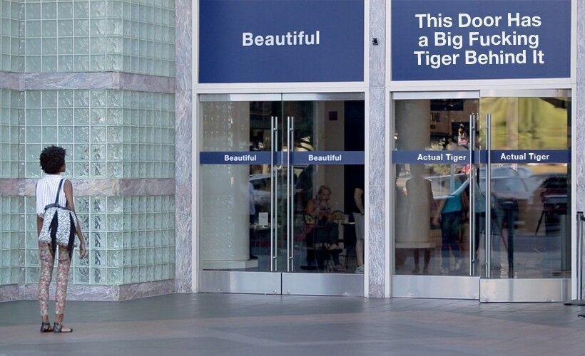 beautiful or tiger