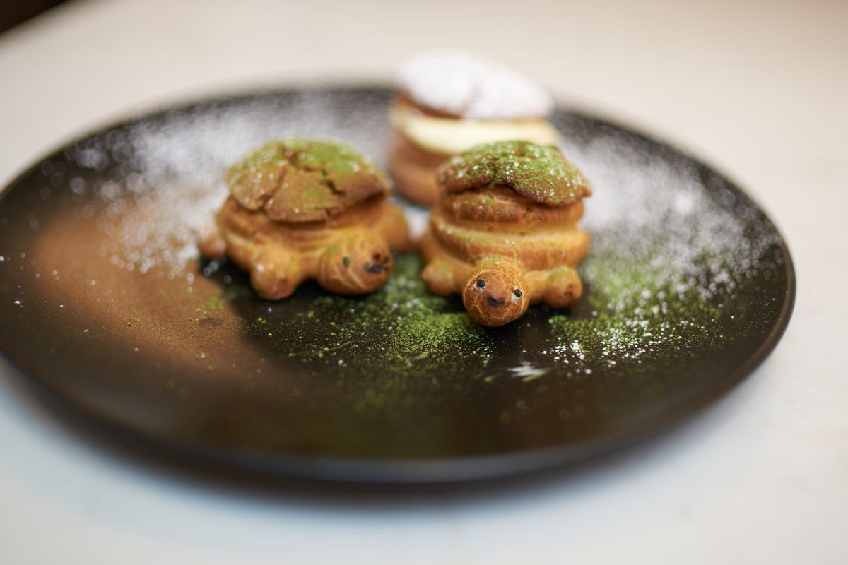 Two cream puffs in the shape of turtles.