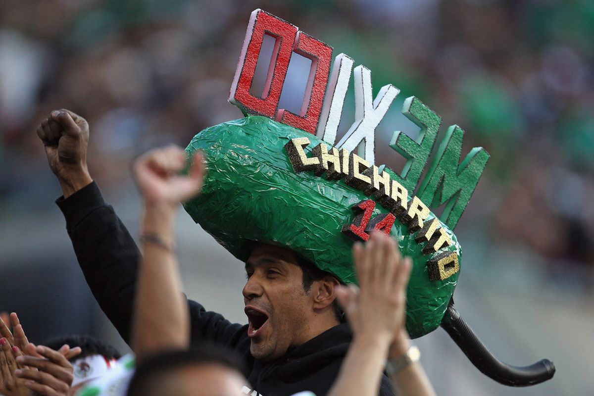 CHICAGO, IL - JUNE 12:  A fan of Mexico cheers on his team against Costa Rica during a CONCACAF Gold Cup 2011 match at Soldier Field on June 12, 2011 in Chicago, Illinois. Mexico defeated Costa Rica 4-1.  (Photo by Jonathan Daniel/Getty Images)