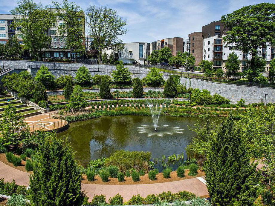 A lush pond and plants surrounded by white and brick apartment buildings.
