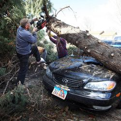 Ralph Price helps clear one of the fallen tree at his neighbor Shan Stott's home in Layton following a wind storm, Thursday, Dec. 1, 2011.