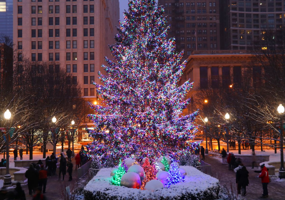 A tall evergreen tree wrapped in lights in downtown Chicago. There is snow on the ground.