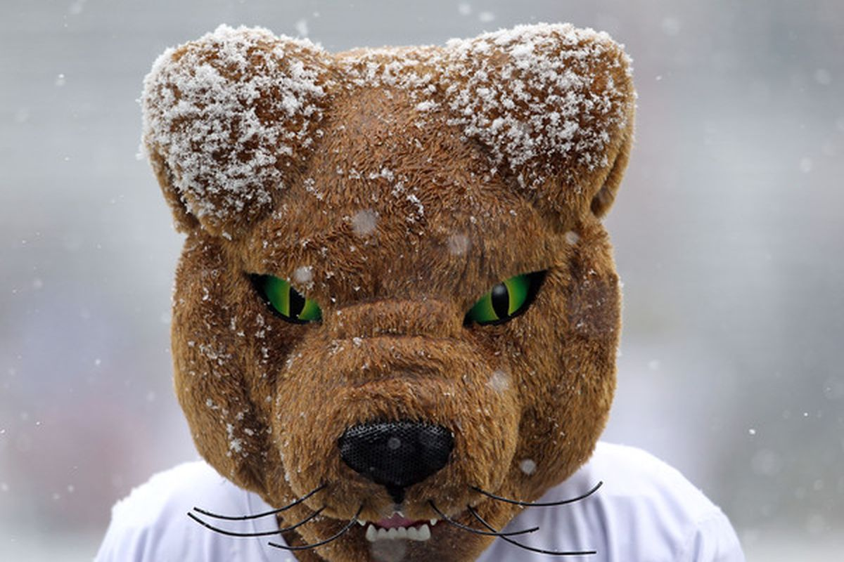Roc is ready to get out of the snow. (Photo by Andy Lyons/Getty Images)