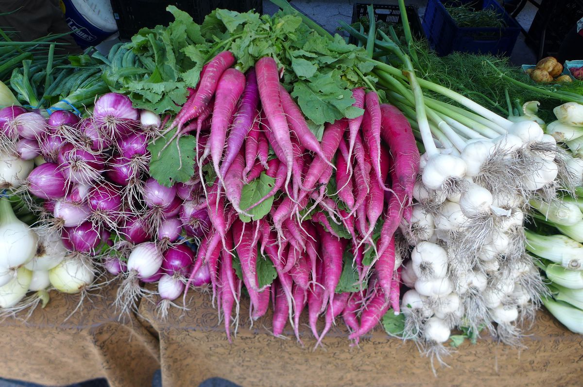 A big bunch of radishes that look like red carrots.