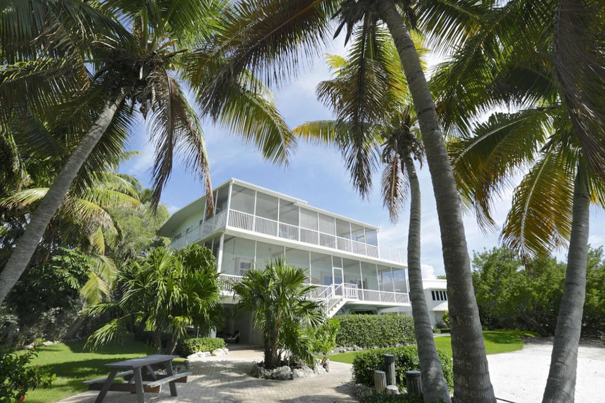 Backyard view of a large white home in Islamorada, sitting in front of a picnic area engulfed by palm trees and a white sandy beach
