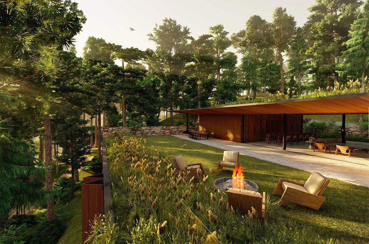 Modern wooden house with green lawn