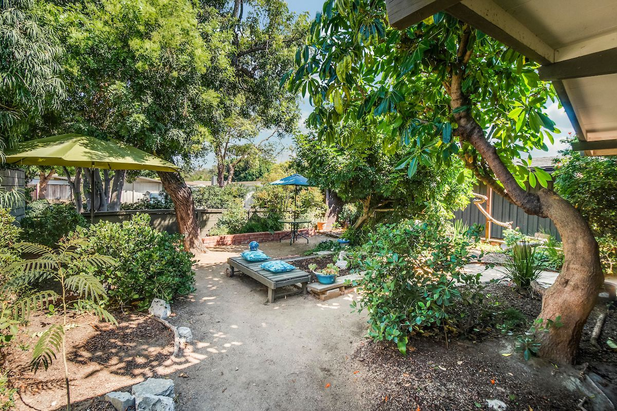 Backyard with trees and garden space