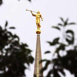 Angel Moroni statue on the Ogden Utah Temple in Ogden, Tuesday, July 29, 2014.