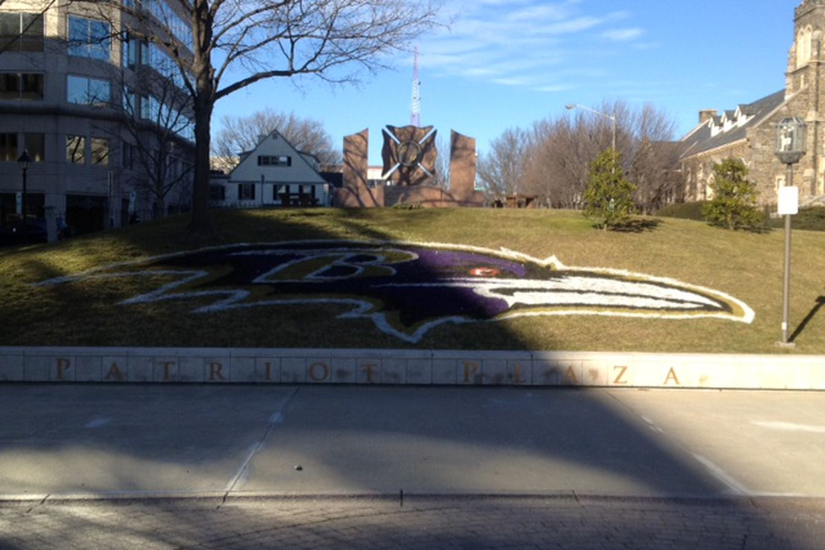Ravens Logo - Towson, MD (1/18/2011)