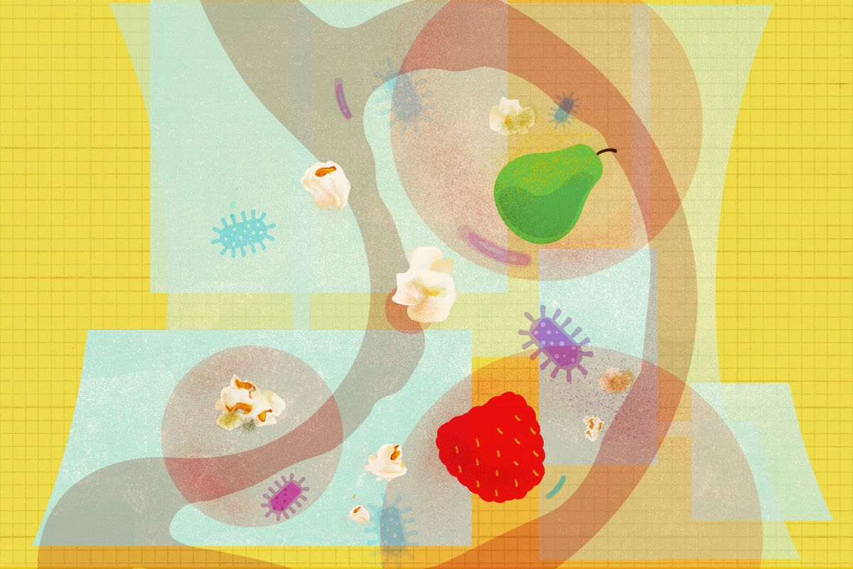 An illustration of a human stomach with fruits and popcorn in it.