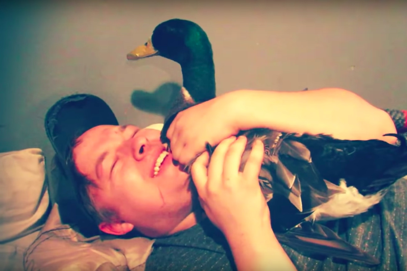 TikTok's best comedy duo is a loud man and his duck