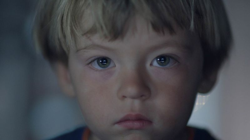 A young boy looks straight into the camera.