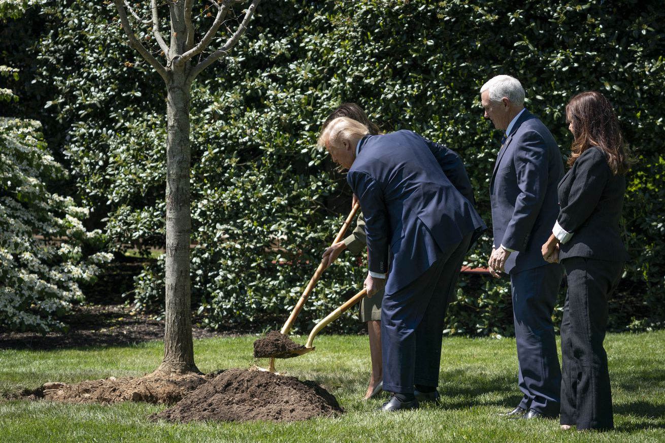 President Trump And First Lady Melania Plant Tree For Earth Day And Arbor Day On South Lawn Of White House