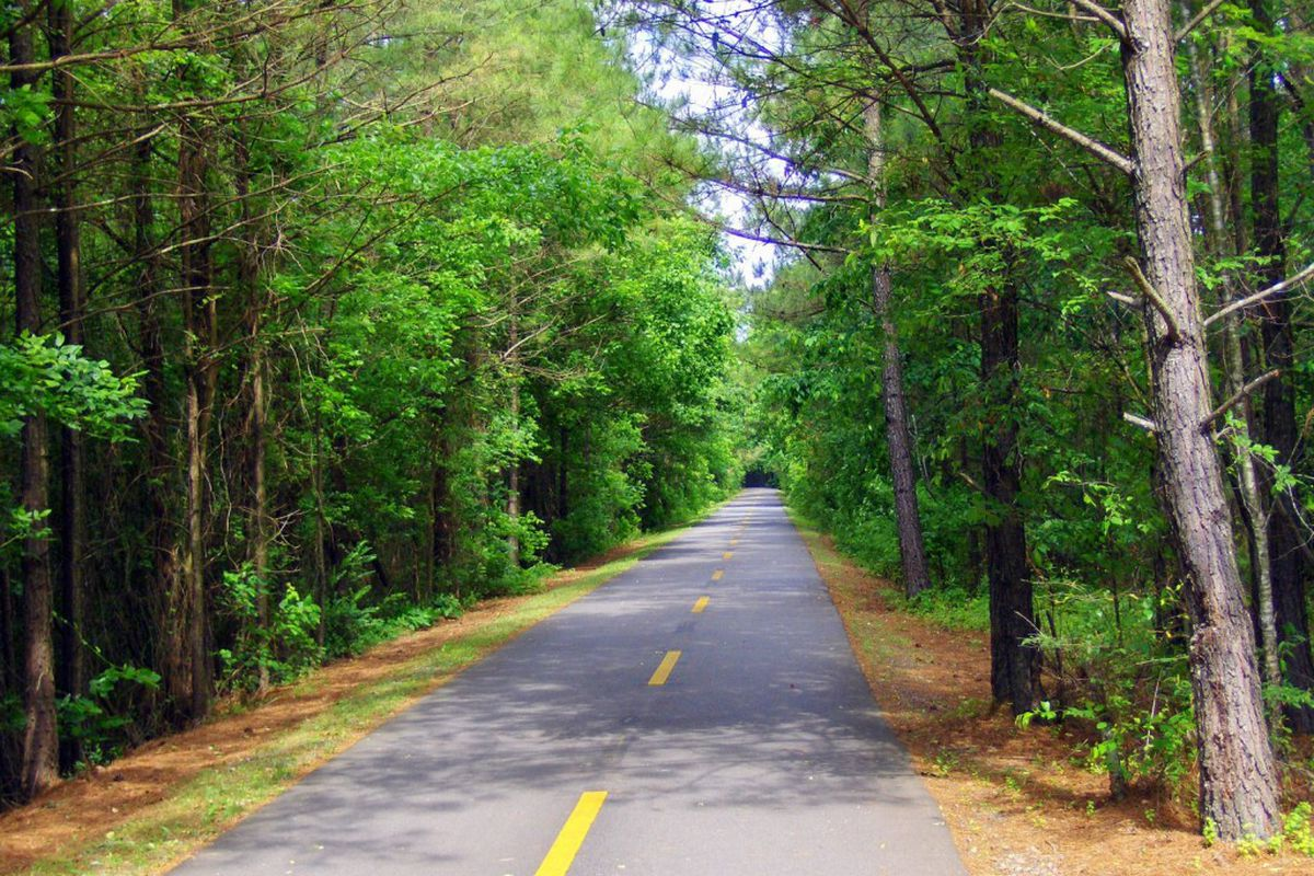 A paved trail runs off into the woods.