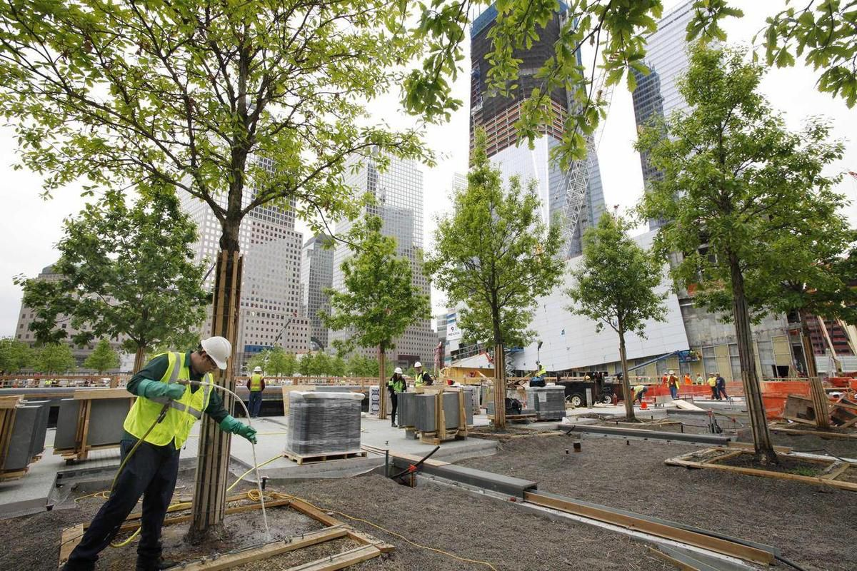 FILE - In this May 13, 2011 file photo, arborist Jeremy DeSimone, left, sprays fertilizer on a swamp white oak at the National September 11 Memorial at the World Trade Center site in New York. The foundation that runs the memorial estimates that once the