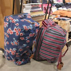 We're so into these colorful rolling bags