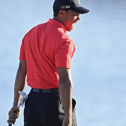 Tiger Woods celebrates on the 18th green after winning the Arnold Palmer Invitational golf tournament at Bay Hill, Sunday, March 25, 2012, in Orlando, Fla.  (AP Photo/John Raoux)