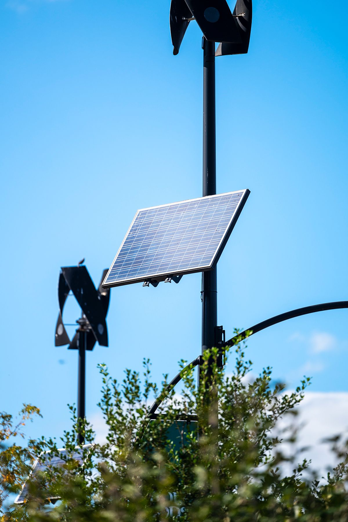 Solar panels dotted the Whole Foods parking lot in Gowanus, Brooklyn, Oct. 1, 2021.