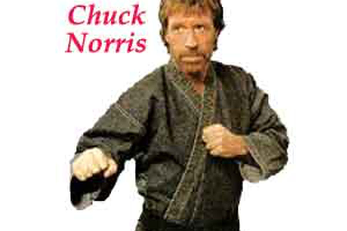 """All I did was Google """"random"""", and Chuck Norris showed up.  (via <a href=""""http://www.adiumxtras.com/images/pictures/chuck_norris_random_fact_generator_6_3957_2224_image_2578.jpg"""">www.adiumxtras.com</a>)"""