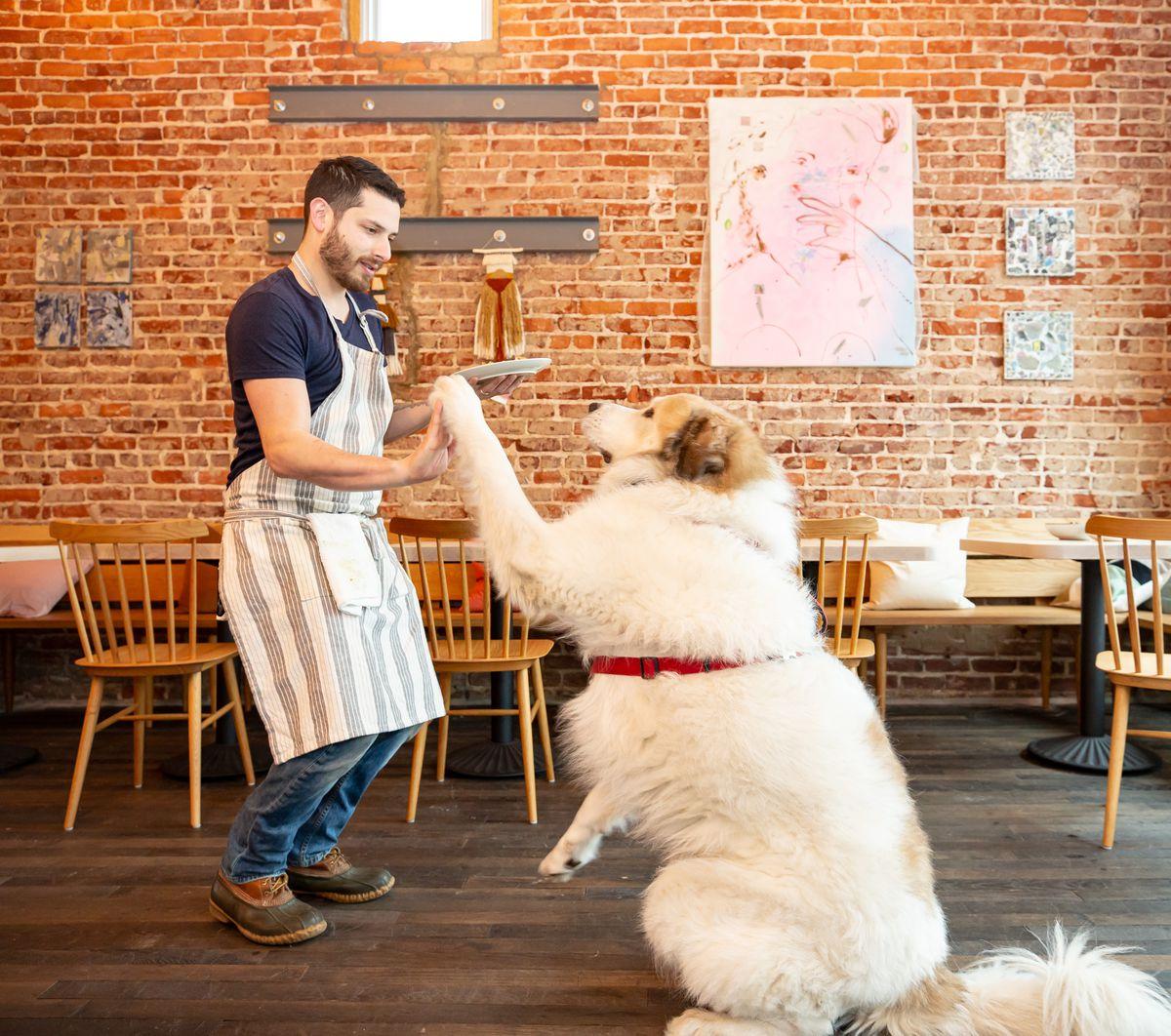 Chef Jarrett Stieber high-fiving Fernando the dog inside the dining room at Little Bear in Summerhill Atlanta