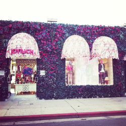 You can't miss Joyrich's eye-catching floral-infused exterior.