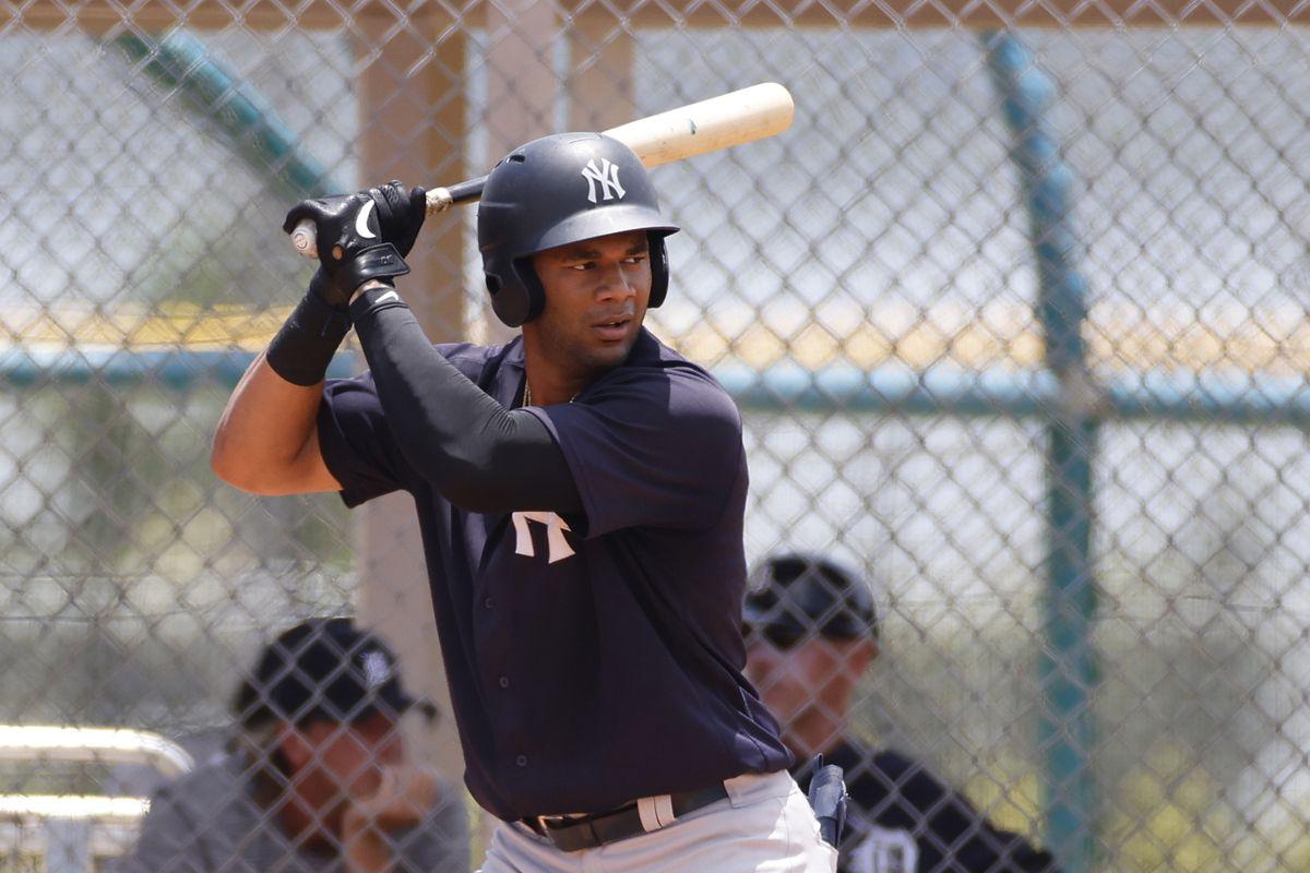 MiLB: JUL 09 Florida Complex League - Yankees v Tigers