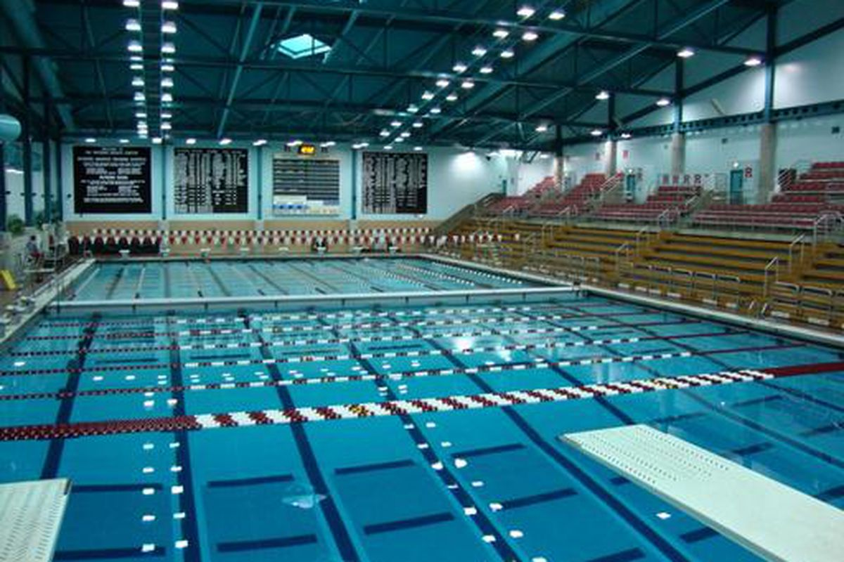 rutgers olympic sports  time to jump back in the pool